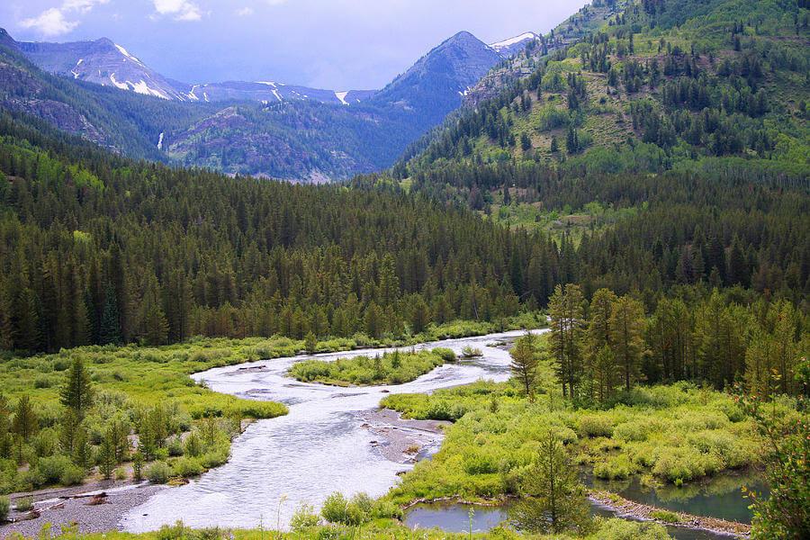wilderness water filtration